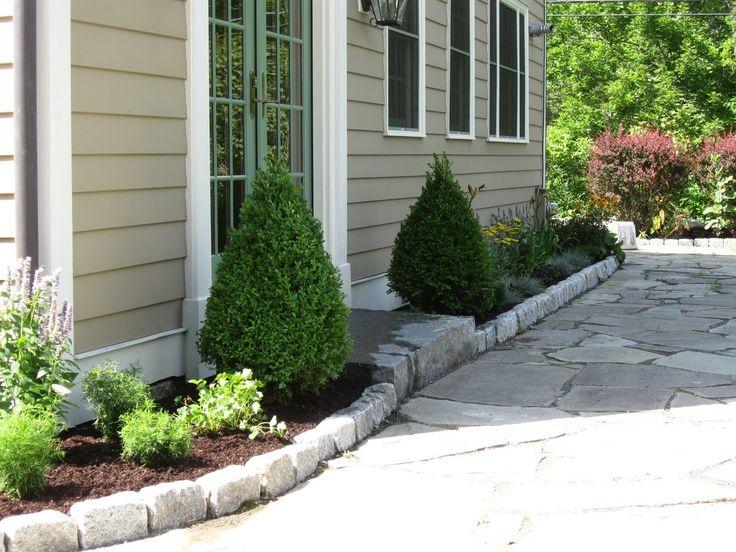 Green mountain hybrid boxwood lot of 10 for Low maintenance evergreen shrubs