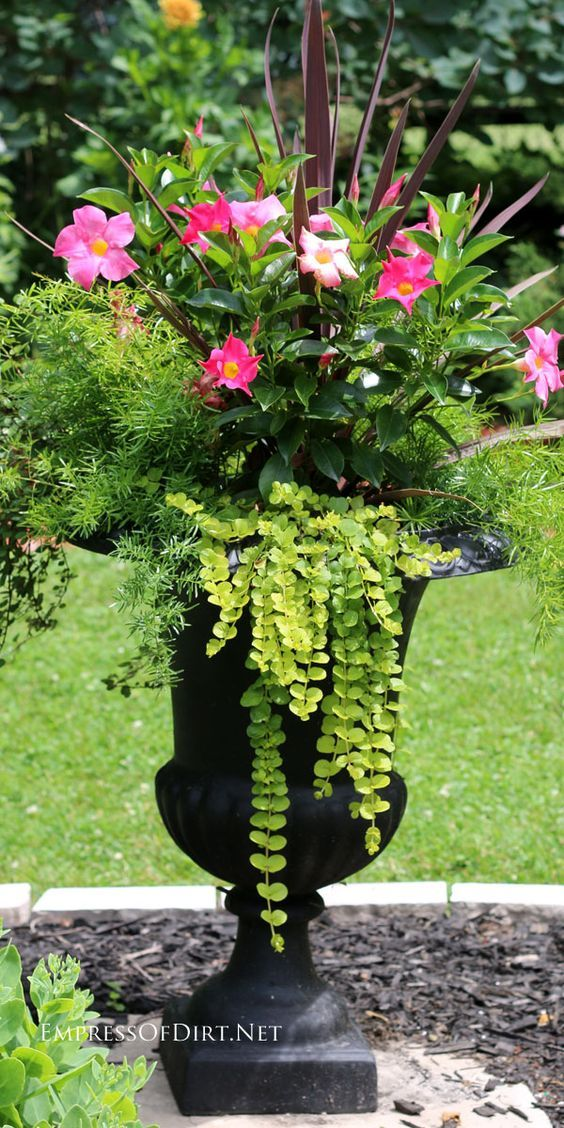 Best 25 creative garden ideas ideas on pinterest garden for Yard planter ideas