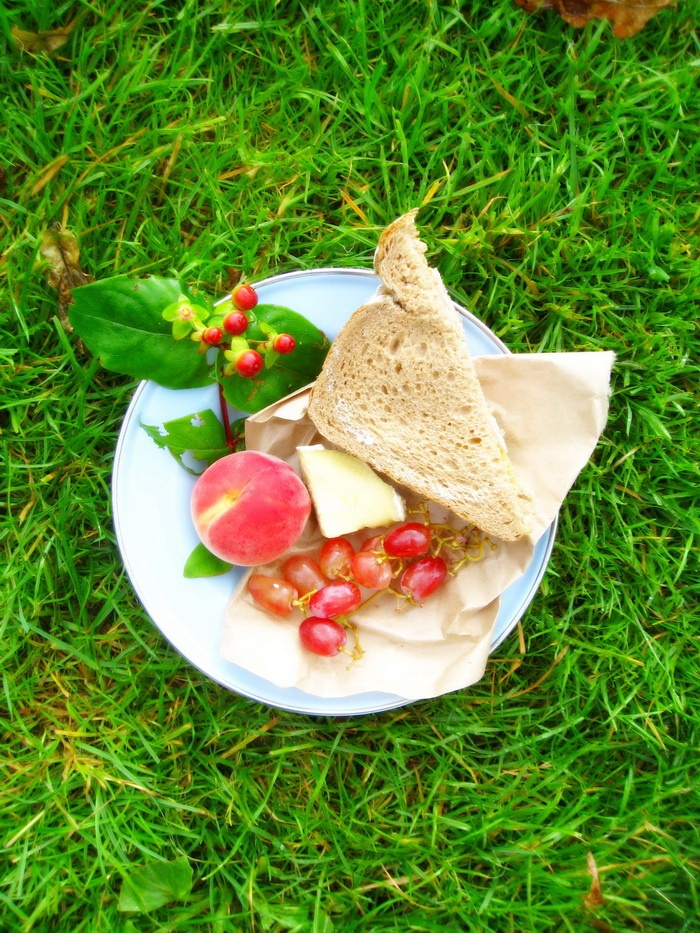 Picnic Food Styling <3