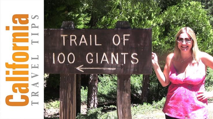 Giant Sequoia National Monument - Trail of 100 Giants
