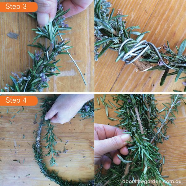 Rosemary wreath for Anzac Day DIY steps 3 & 4