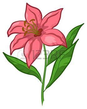 red lily flowers fleur de lys symbole de l 39 amour cadeau floral isol d ssins fleurs. Black Bedroom Furniture Sets. Home Design Ideas