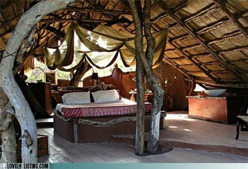 i always wanted a treehouse.....Dreams Bedrooms, Trees House Bedrooms, Tiny House, Trees Forts, Interiors, Canopies Treehouse, Tree Houses, Master Bedrooms, Treehouse Bedrooms