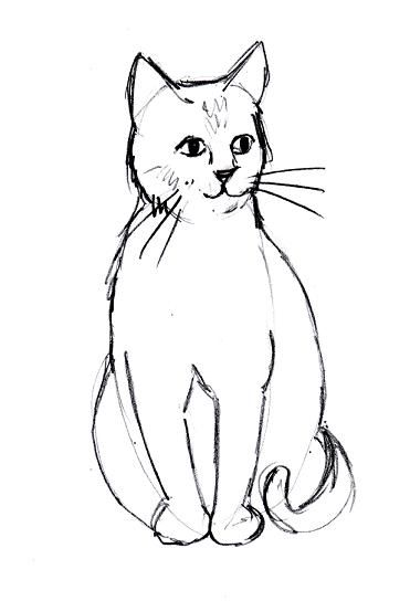 cat line drawing cute cats - Kids Drawing Sketches