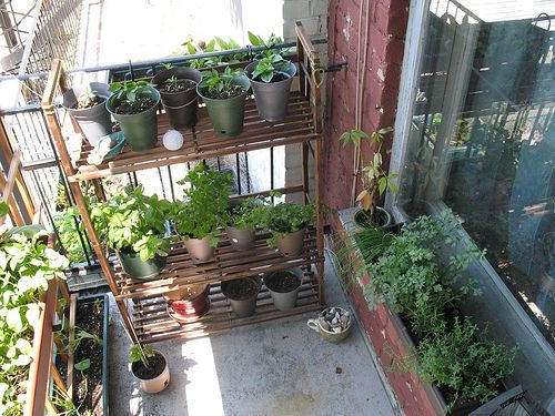 Best 25+ Apartment balcony garden ideas on Pinterest | Small ...