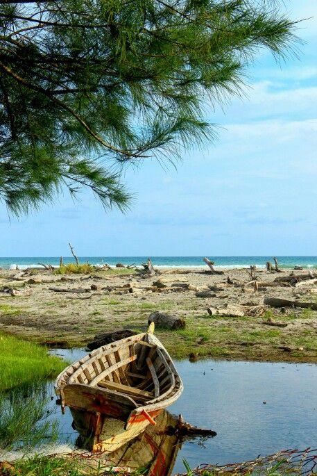 Alam bahari