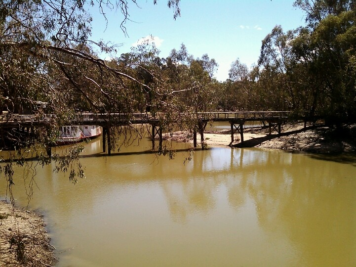The mighty murrey river at swan hill, vic