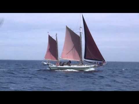 Tall Ship Thane | Victoria BC #VictoriaBC #vancouverisland #travel #sailing www.ThreeHourSail.com