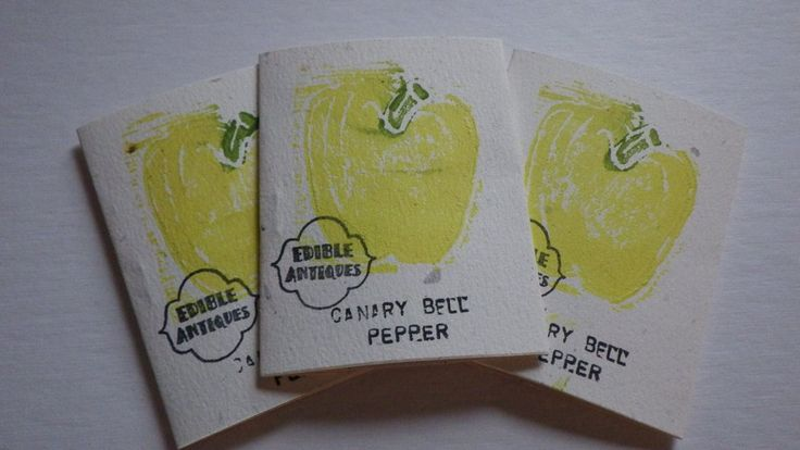 """""""Canary Bell"""" Pepper Seeds"""