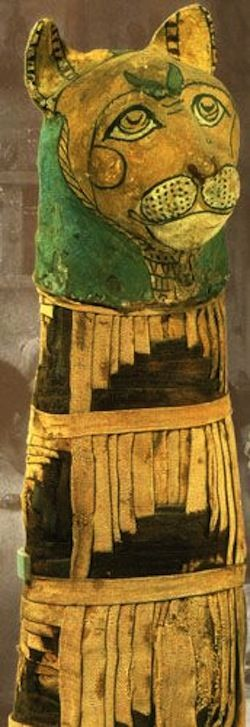 Egyptian cat mummy, 332 BC (Louvre, Antiquités égyptiennes, France)