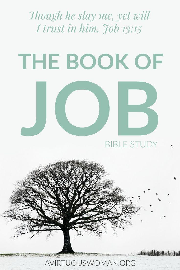 The Book of Job Bible Study Book of job, Job bible