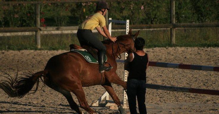 Cómo hacer pantalones de montar. La ropa de montar puede ser una parte cara del deporte de equitación. Pero hacer tú misma el traje de montar puede ahorrarte algo de dinero. Con un poco de tiempo y paciencia, puedes crear pantalones de montar fáciles de poner para el montaje diario o de competición.