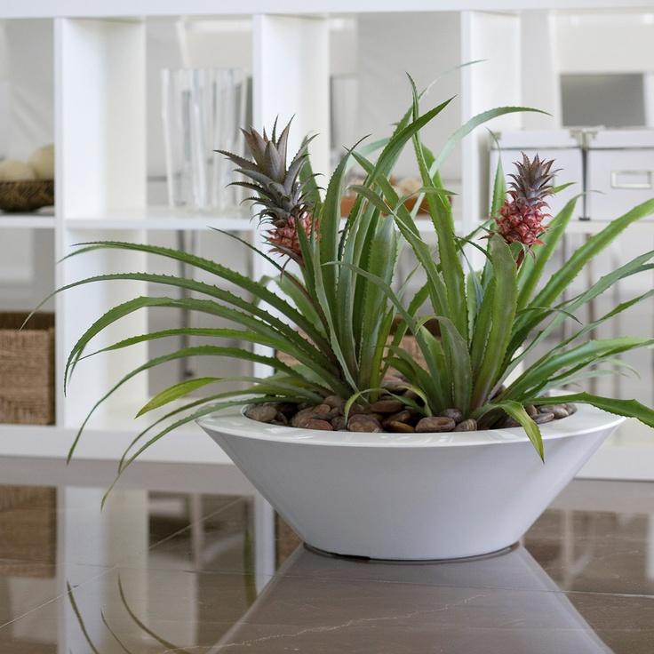 Awesome Planter · Modern PlantersWhite PlantersIndoor ...