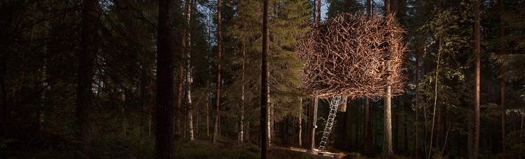 The Bird's Nest - Treehotel för Två i Luleå för 3990 kr per person. En Present Att Minnas ifrån Upplevelse.com. Köp Tryggt Online.