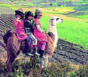 equador   Discovering Ecuador » Ecuador mi país