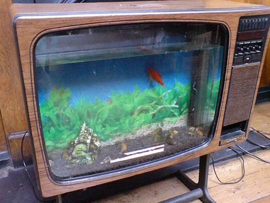 Vintage tv into fish tank cool fish tanks tvs and cool fish for Awesome fish tanks
