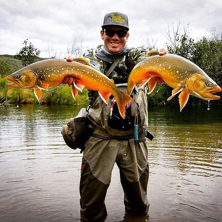 captwww doubling up on the Arctic char! Arctic char