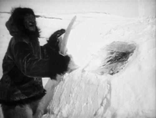 Robert Flaherty: Nanook of the North