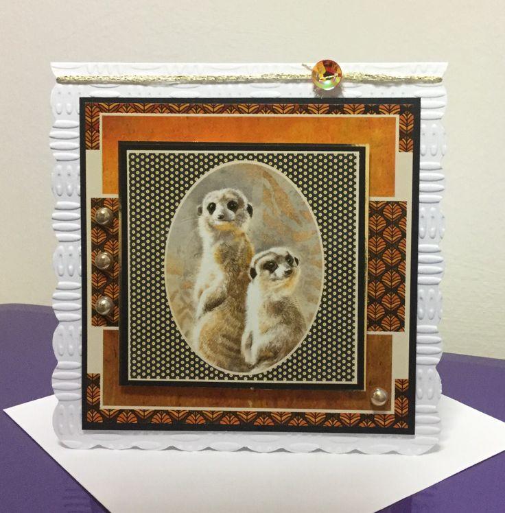 Meerkats, Pollyanna Pickering Sketchbook 2