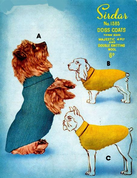 Knitting For Dogs Irresistible Patterns : 26 best knitting for small dogs images on Pinterest Dog sweater pattern, An...