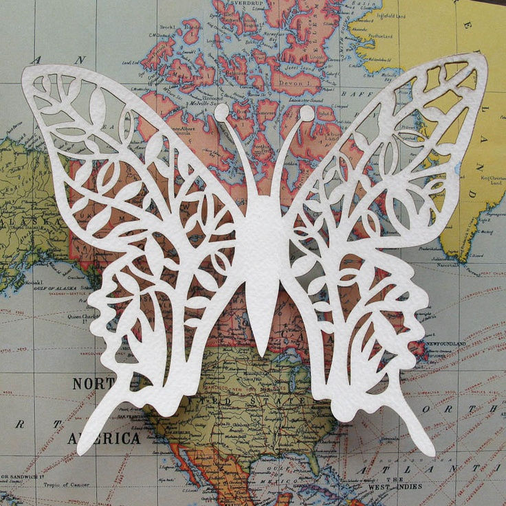 Butterfly (Mapped)