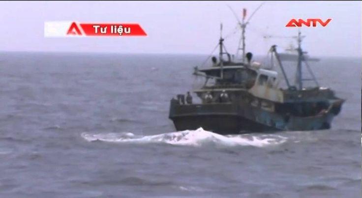 """Tàu nước ngoài vô tư """"trộm cắp"""" trên vùng biển Việt Nam"""