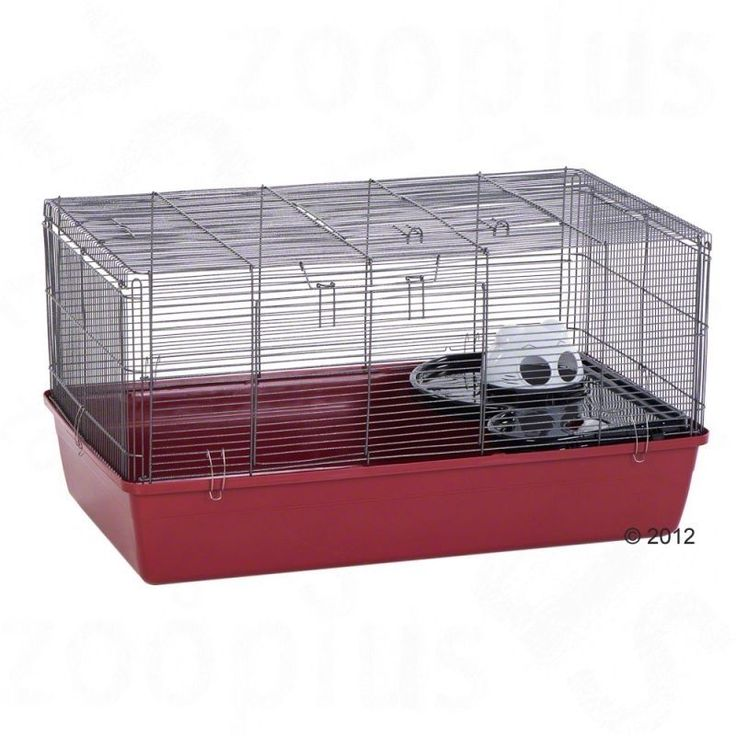 Large Hamster Cage Burrow Slide Play Fun Pets Base Tray Easy Clean Gerbils NEW http://www.ebay.co.uk/itm/Large-Hamster-Cage-Burrow-Slide-Play-Fun-Pets-Base-Tray-Easy-Clean-Gerbils-NEW-/252299964957?hash=item3abe3ff21d:g:H8EAAOSwx-9Wz252