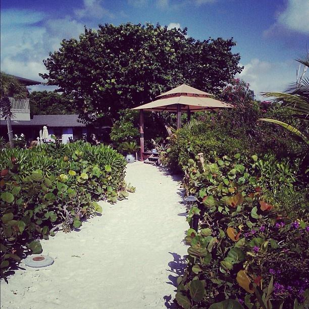 sanibel single personals Favorite this post apr 27 sanibel island vacation week july21-28,  favorite this post apr 16 single- wonderfull waterfront $150 3br - 2094ft 2.