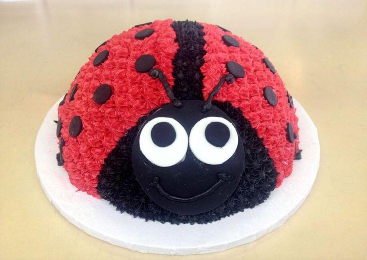 LadyBug Cake 2 V01 800x568