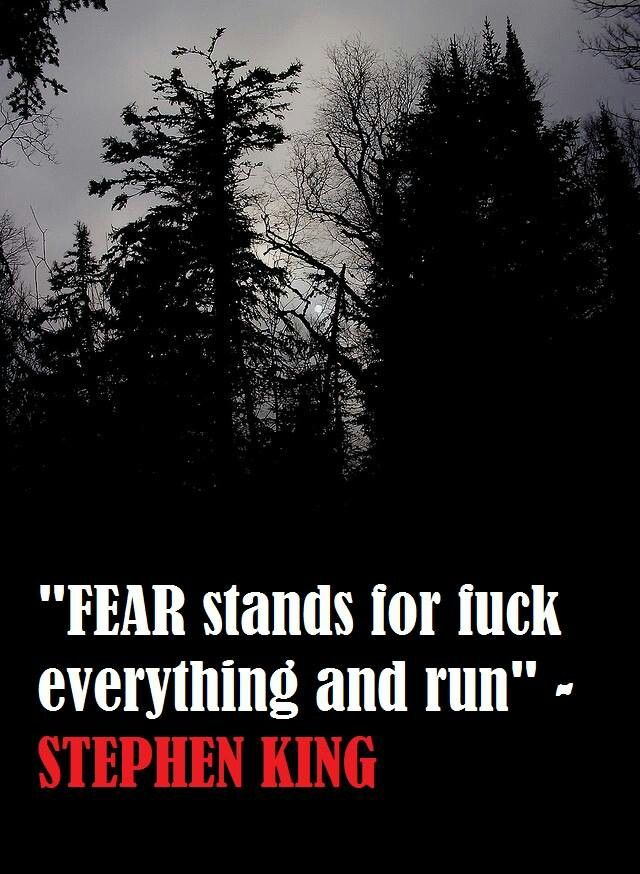 This made me laugh. If Stephen King tells me to run you can bet I'm going to..