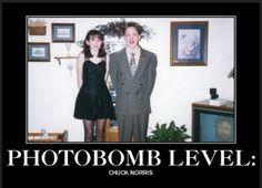 meet the abbott photobomb pictures