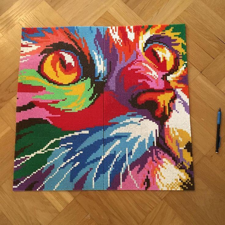 Rainbow cat perler bead art by  madelaine.gustavsson