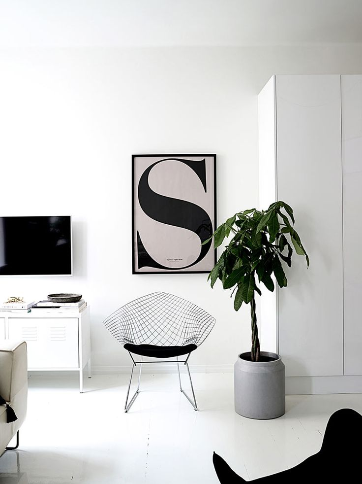 black and white living room with art and plants