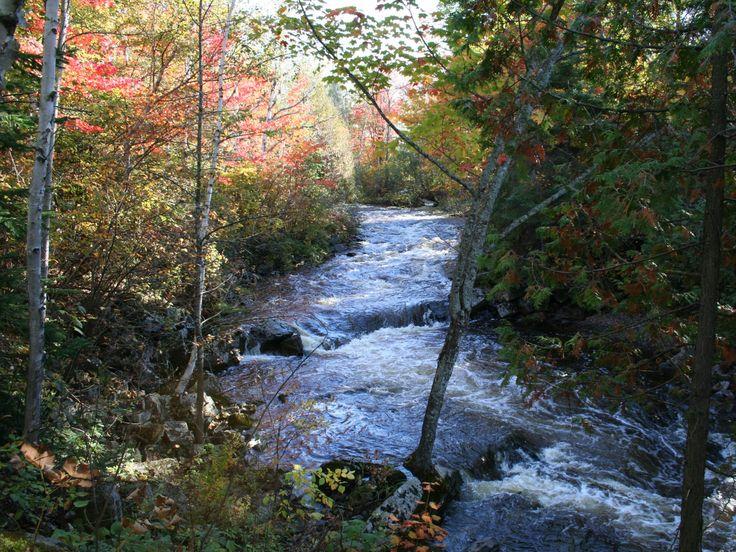 Rivière Trois-Saumons #automne