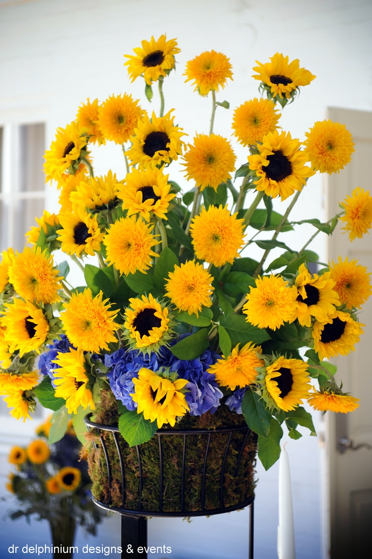 Dr Delphinium Wedding Altar Arrangement, Sunflowers & Hydrangea