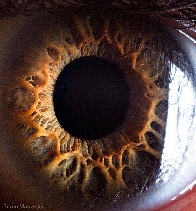 Как правильно фотографировать глаза вблизи ощущение