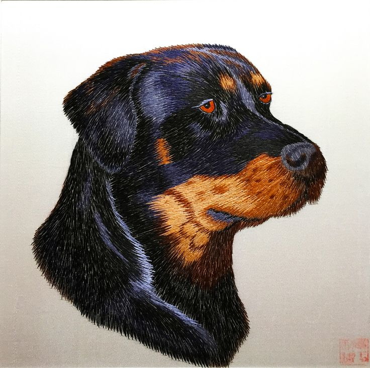 Rottweiler Dog #Beautiful #Handmade #Silk #Embroidery #Art 34133 https://www.amazon.com/gp/product/B00KMKG5U2 Dogs are prominent in Chinese culture, they are the 11th sign in the Chinese zodiac and represent people who are honest, faithful and sincere. Symbolically, dogs also represent the respect for tradition and honor as well as the service of others. In Feng Shui, dogs are powerful protection charms. Dog images are often placed in pairs at entrances and places with valuable objects.