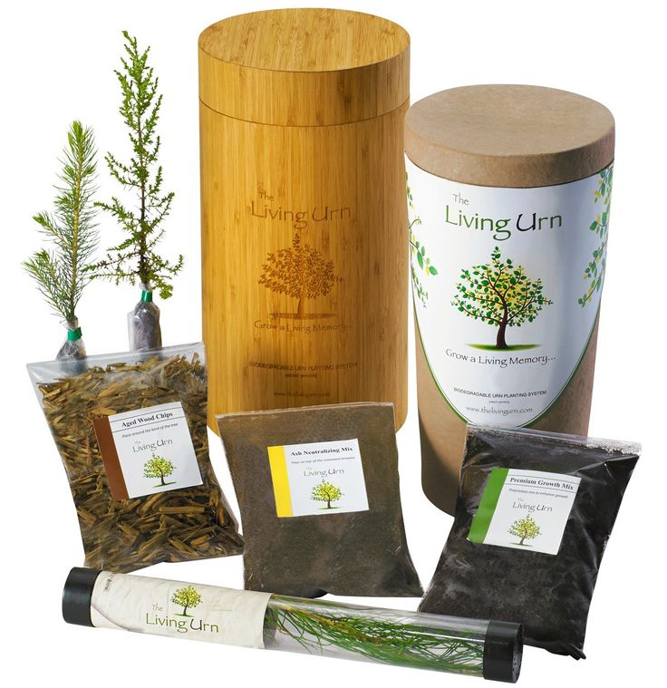 The Living URN  for People and The Living Urn™ for Pets are patent pending planting systems that make it easy for you to successfully grow a healthy and vibrant memory tree, plant or flowers from your loved one's cremated remains!    Keep the memory of your loved alive by converting their cremated ashes into a living tree. An urn helps you do just that – the main part contains the ashes while another top capsule contains seeds mixed with soil and nutrients.  Also, see Bios, Biodegradable URN