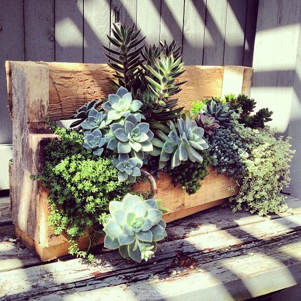 HGTV.com shares 7 ways you can transform plain shipping pallets into gorgeous outdoor pieces at little to no cost.