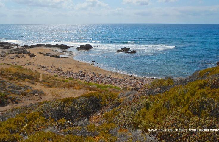 Cosa vedere in Sardegna | Itinerario nel Nord (II parte)