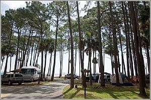 One of the most popular campgrounds in South Carolina, the Hunting Island State Park campground is just a short walk from the Atlantic Ocean.