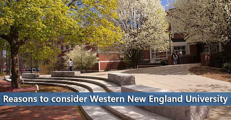 50-50 College profile for Western New England University including graduation rates and financial aid information.