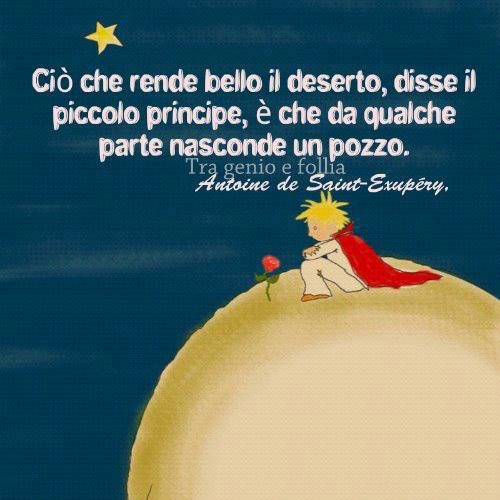 the little prince il piccolo principe