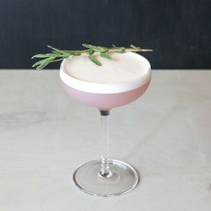 Lavender Pisco Sour: A Pisco Sour with a Lavender Twist | The Drink Blog