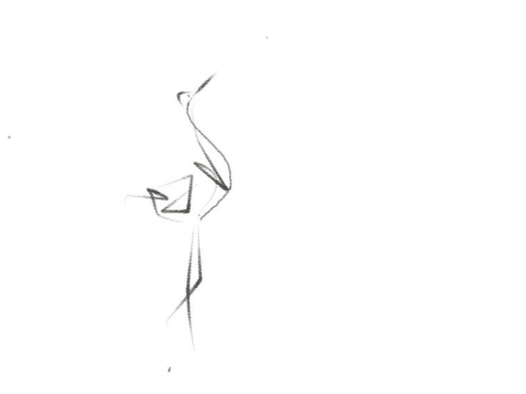 La elegancia de la cigüeña