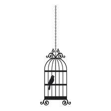 Pretty Birdcage