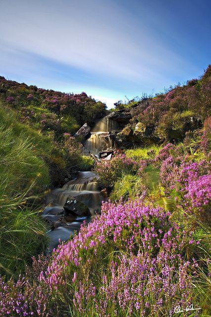 Heathery Falls in The Moors, Northumberland, England