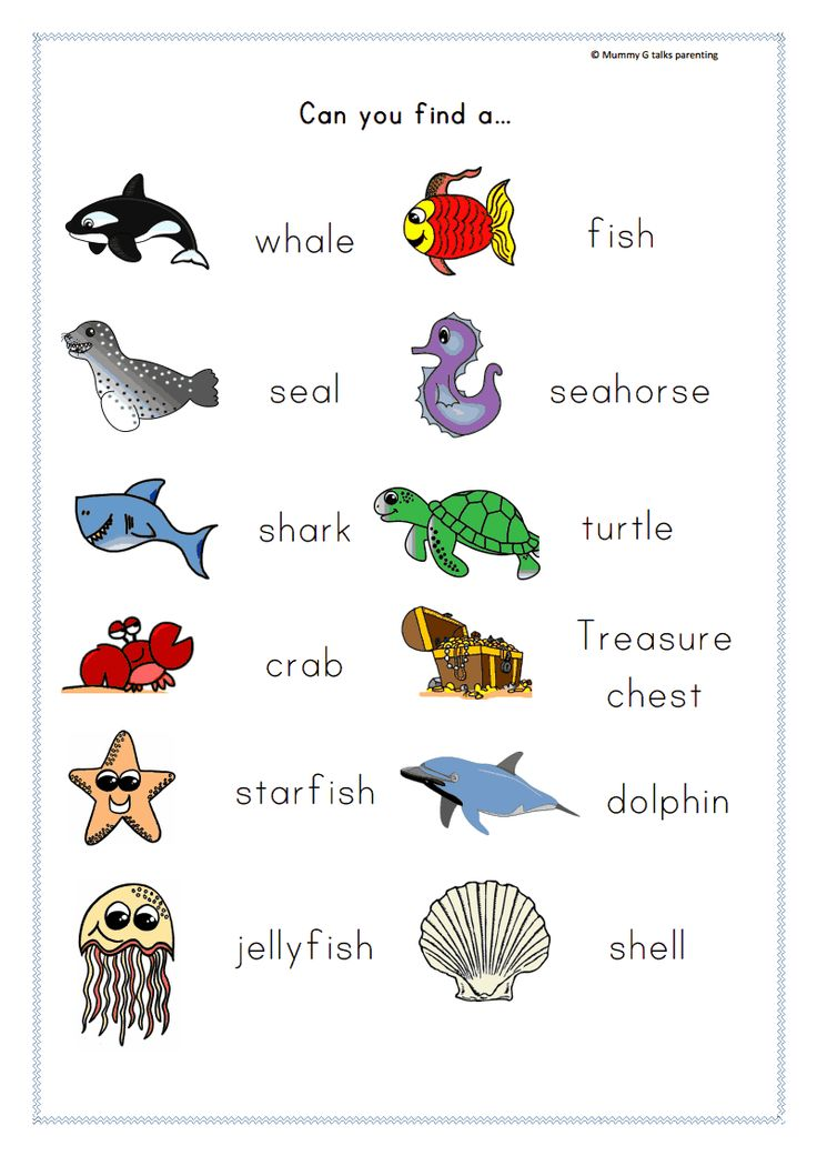 Mummy G early years resources: Under the sea scavenger hunt - FREEBIE