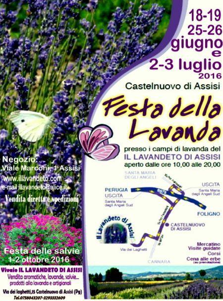 Festa Della Lavanda - Assisi