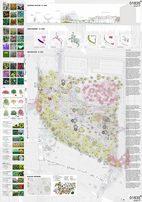 Plaza en Copenague - Maria Mallo. Dra. arquitecta, docente, diseñadora y auto-productora.